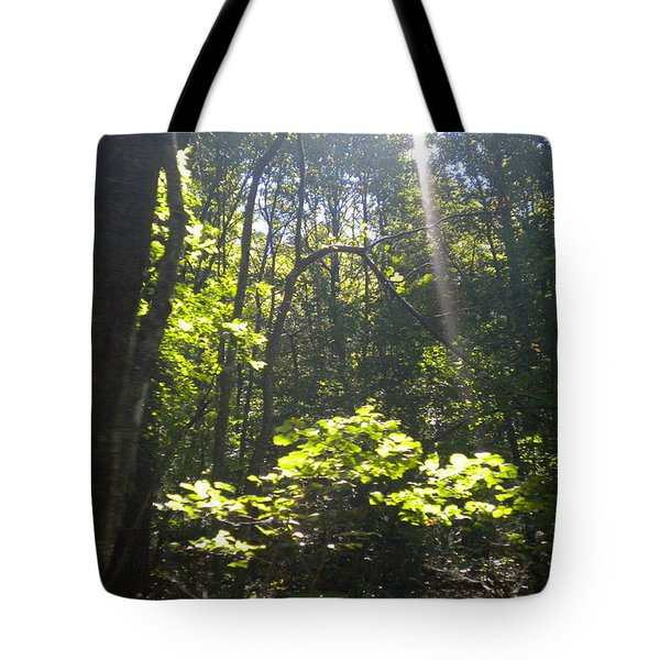 Tote Bag featuring the photograph The Cross by Diannah Lynch