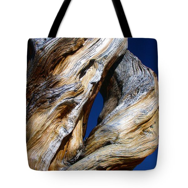 The D Tree Tote Bag