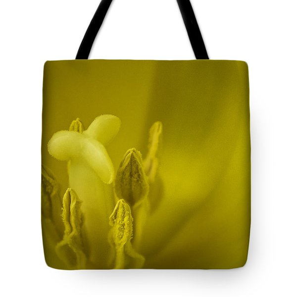 Tote Bag featuring the photograph The Dance by Lucinda Walter