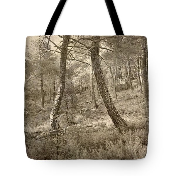 The Dance Of The Forest Tote Bag by Guido Montanes Castillo