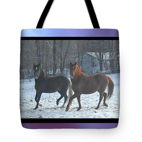 The Dancing Paso Fino Stallions Tote Bag