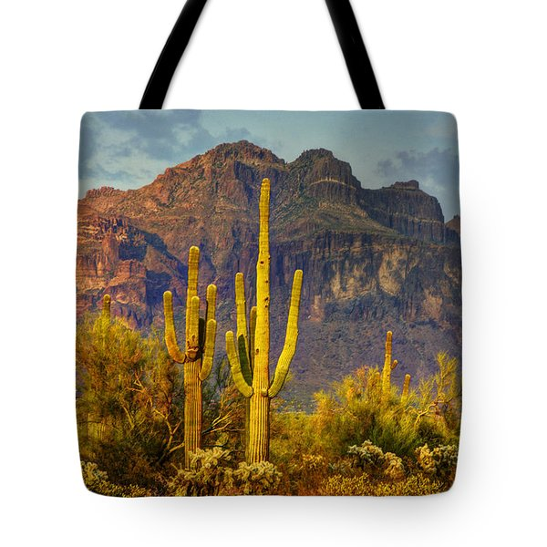 The Desert Golden Hour II  Tote Bag