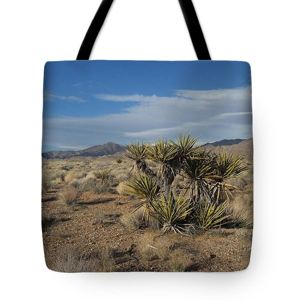 The Desert In Winter Tote Bag