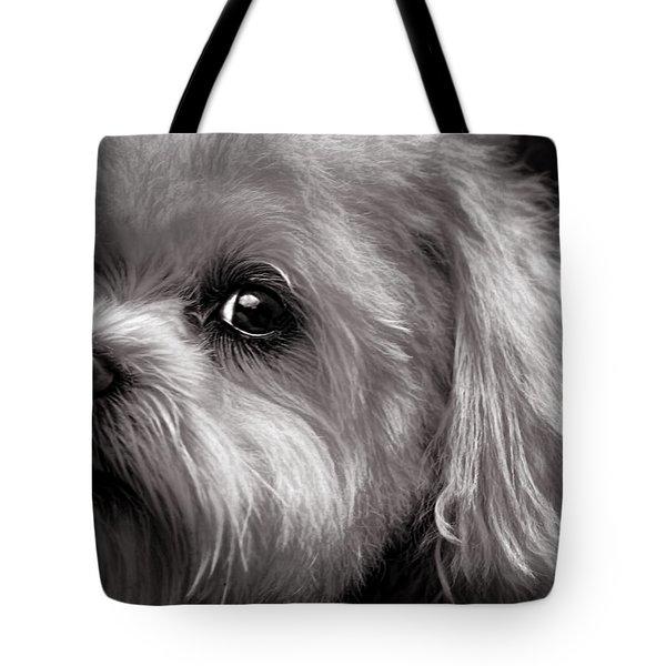 The Dog Next Door Tote Bag
