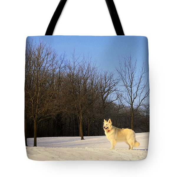 The Dog On The Hill Tote Bag by Kay Novy