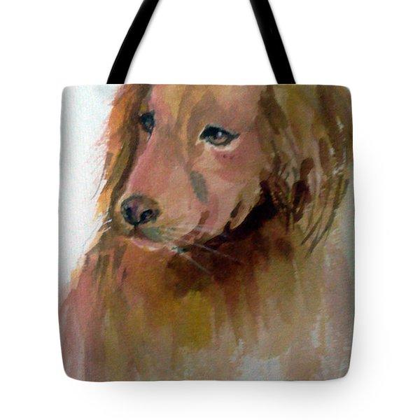 The Doggie Tote Bag