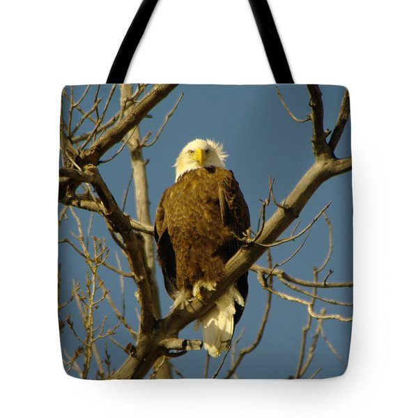 The Eagle Looks Down Tote Bag by Jeff Swan