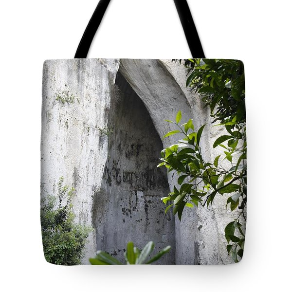 The Ear Of Dionysius Tote Bag