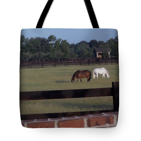 Tote Bag featuring the photograph The Easy Life by John Glass