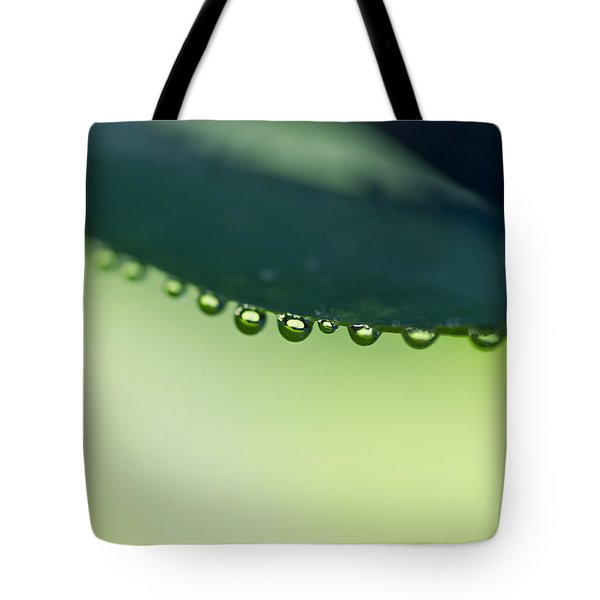 Tote Bag featuring the photograph The Edge II by Priya Ghose