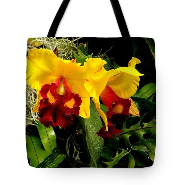 The Elders Tote Bag