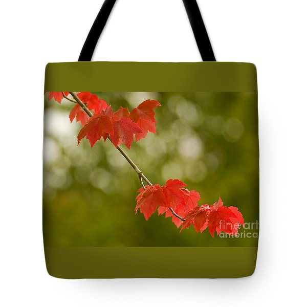 The Essence Of Autumn Tote Bag