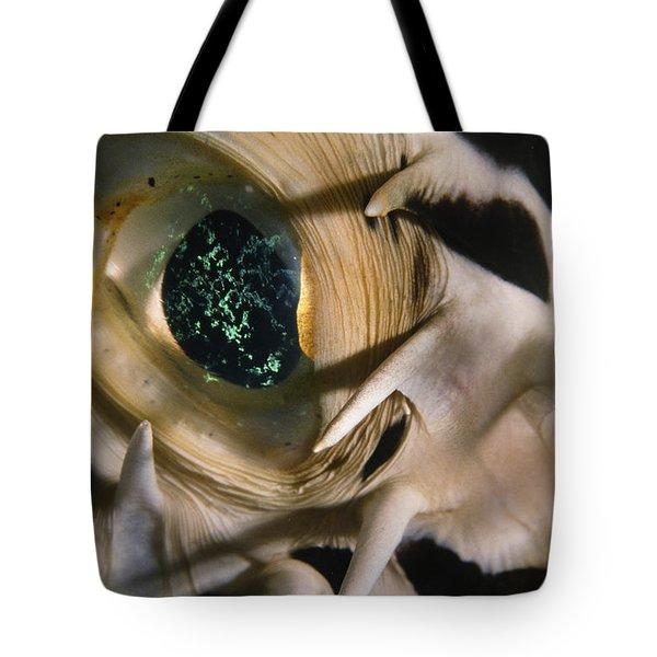 The Eye Of A Pufferfish Tote Bag