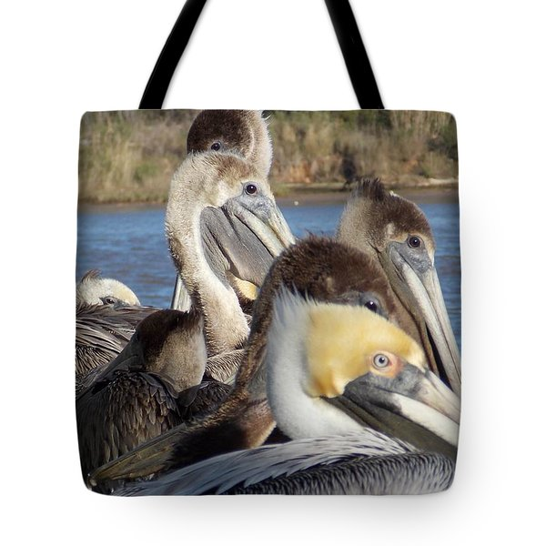 Tote Bag featuring the photograph The Eyes Have It by John Glass