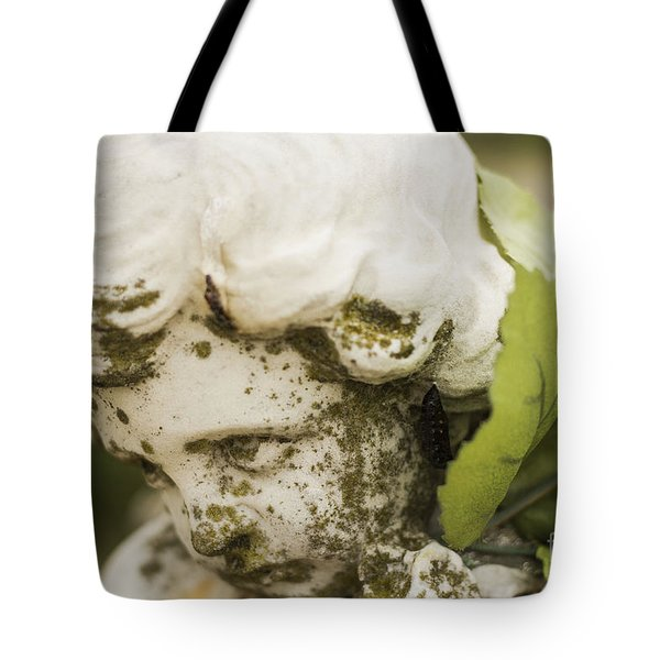 Tote Bag featuring the photograph The Face Of An Angel by Amber Kresge