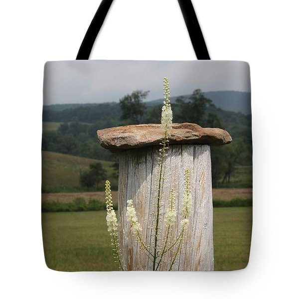 Fall Harvest Tote Bag by Yvonne Wright