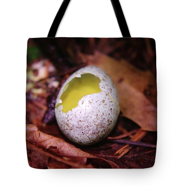 The Fallen  Tote Bag by Jeff Swan
