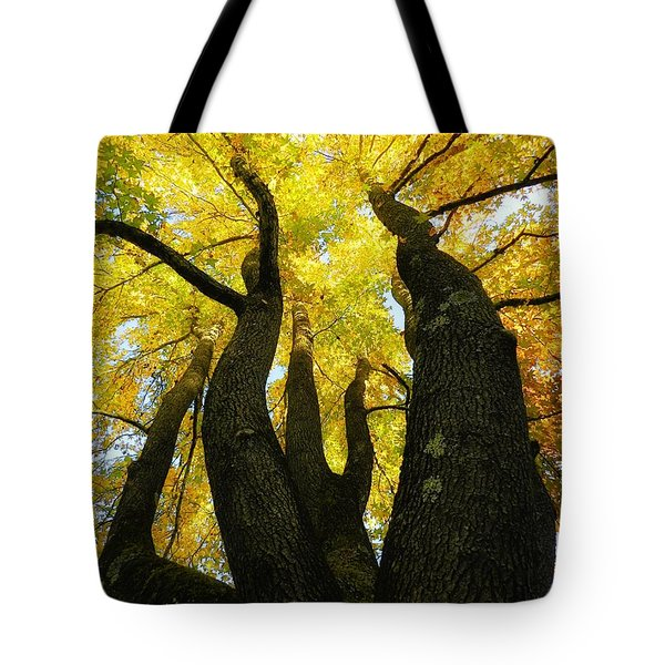 The Family Tree Tote Bag