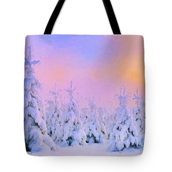 The February Sun Tote Bag