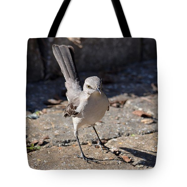 The Fiesty Catbird Tote Bag by Maria Urso