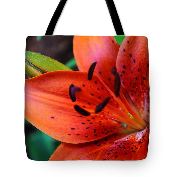 The First Lily Tote Bag