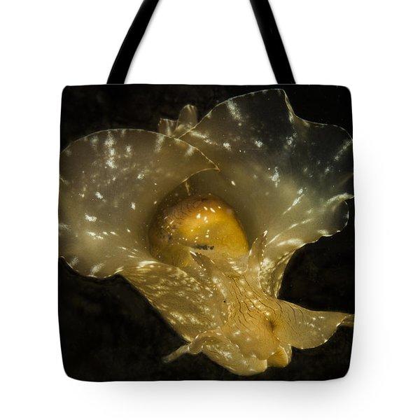 The Flying Aplysia Brasiliana One Tote Bag