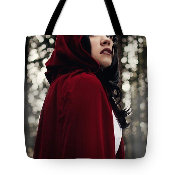 Tote Bag featuring the photograph The Fog Closes In by Lisa Knechtel