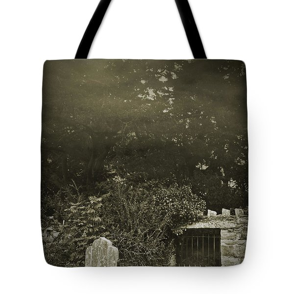 Tote Bag featuring the photograph The Fortingall Yew by Jane McIlroy