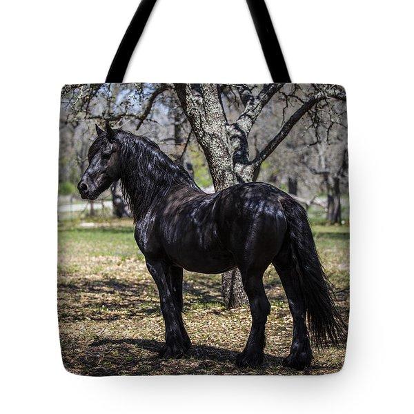 The Friesian Stallion Eros Tote Bag