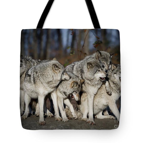 Tote Bag featuring the photograph The Gang by Wolves Only