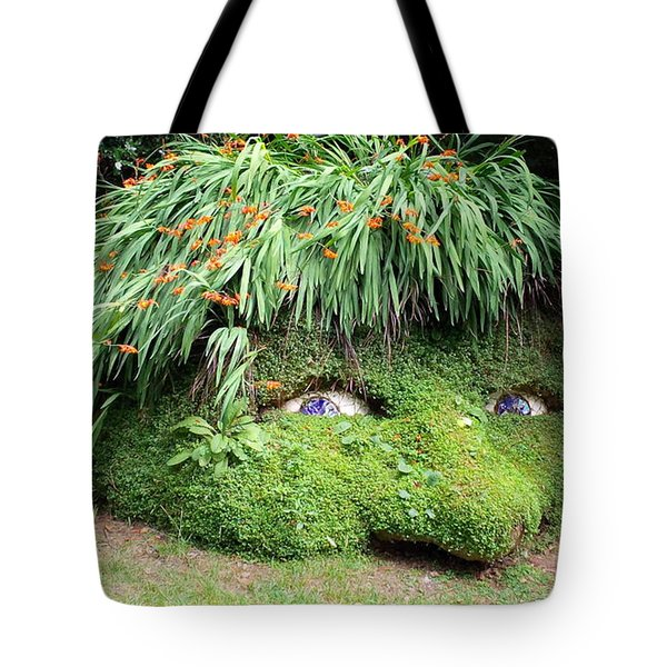 The Giant's Head Heligan Cornwall Tote Bag by Richard Brookes