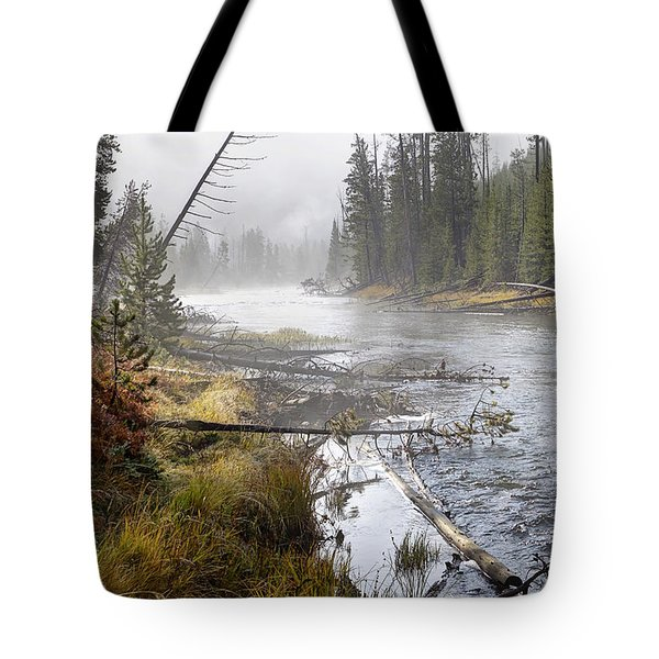 The Gibbon's Inviting Waters  Tote Bag