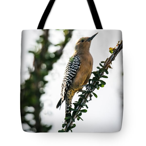 The Gila  Woodpecker Tote Bag by Robert Bales