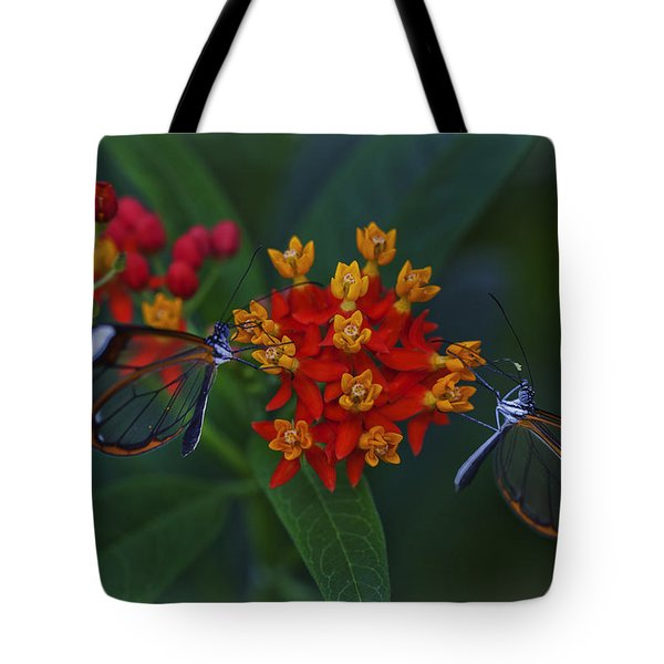 The Glasswinged Butterfly Tote Bag