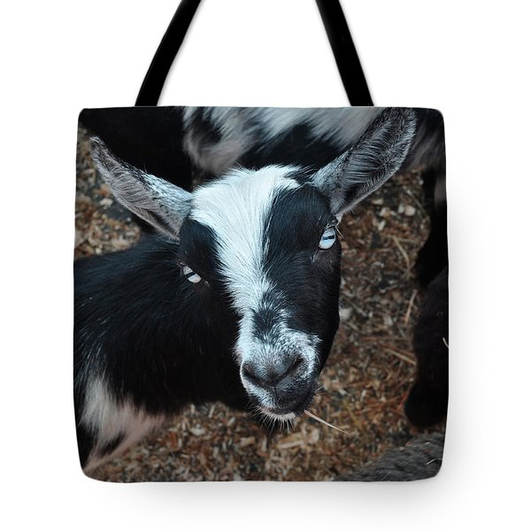 Tote Bag featuring the photograph The Goat With The Gorgeous Eyes by Verana Stark