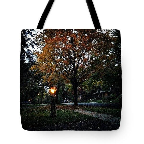 Illuminating Autumn Tote Bag