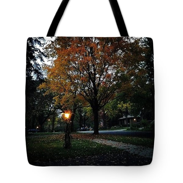 Illuminating Autumn Tote Bag