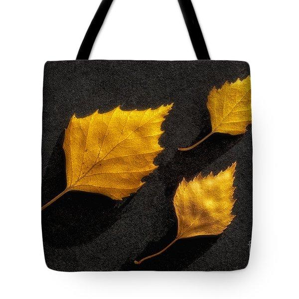 The Golden Leaves Tote Bag by Veikko Suikkanen