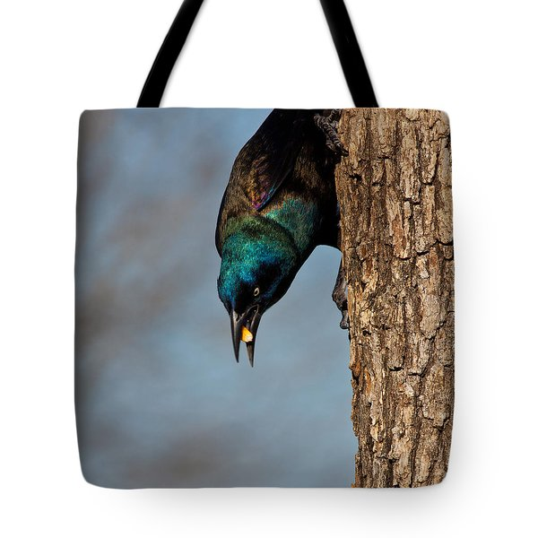 The Grackle Tote Bag