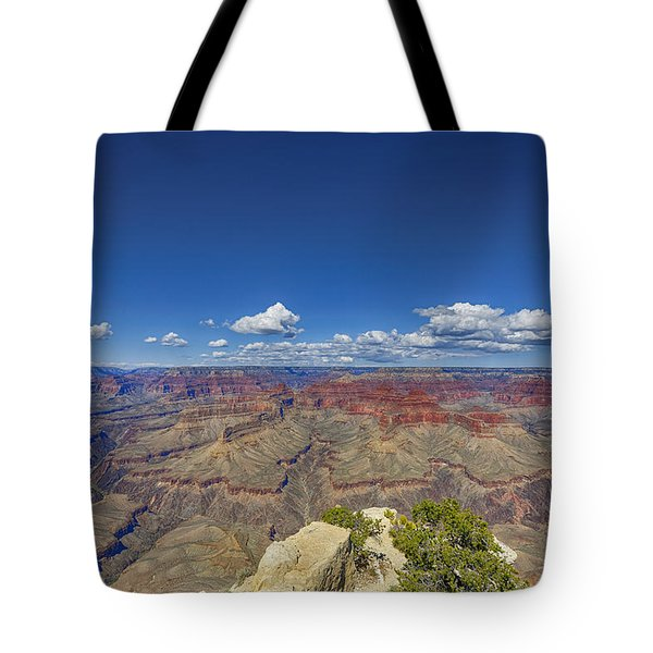 The Grand Canyon--another Look Tote Bag by Angela A Stanton