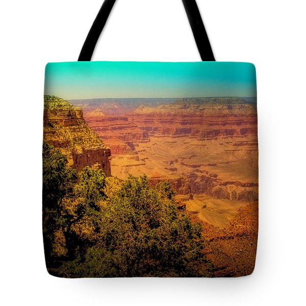The Grand Canyon Vintage Americana Vii Tote Bag by David Patterson