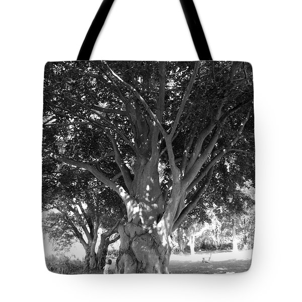 The Grandmother Tree Tote Bag by Sarah Lamoureux