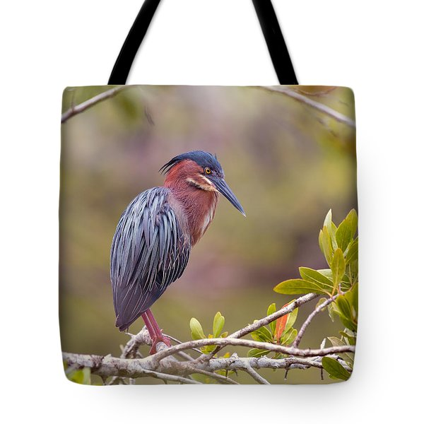 The Green Heron At Blue Hole Tote Bag