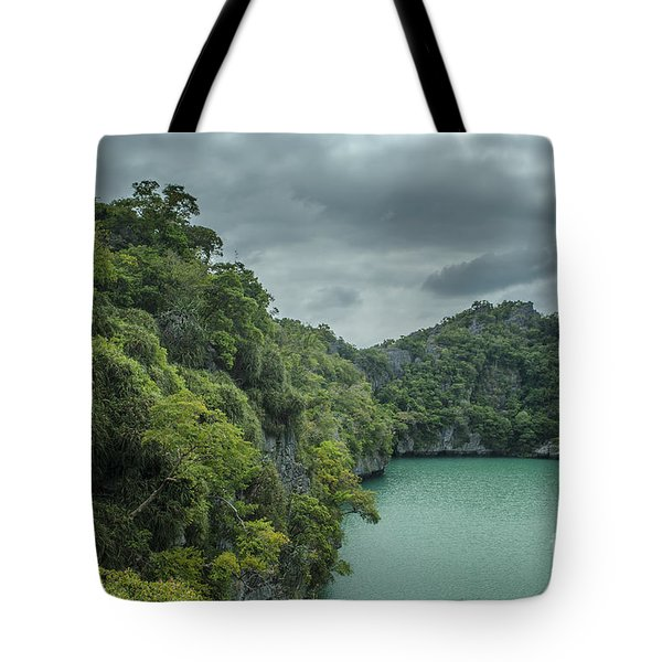 The Green Laguna Tote Bag by Michelle Meenawong