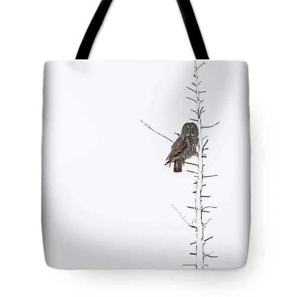 The Grey Hunter On White Tote Bag by Mircea Costina Photography