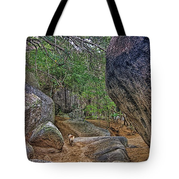 Tote Bag featuring the photograph The Guide by Olga Hamilton
