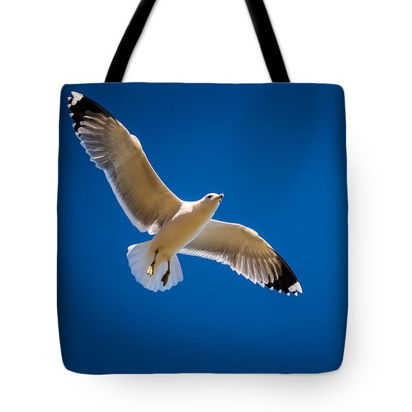 Tote Bag featuring the photograph The Gull by Janis Knight