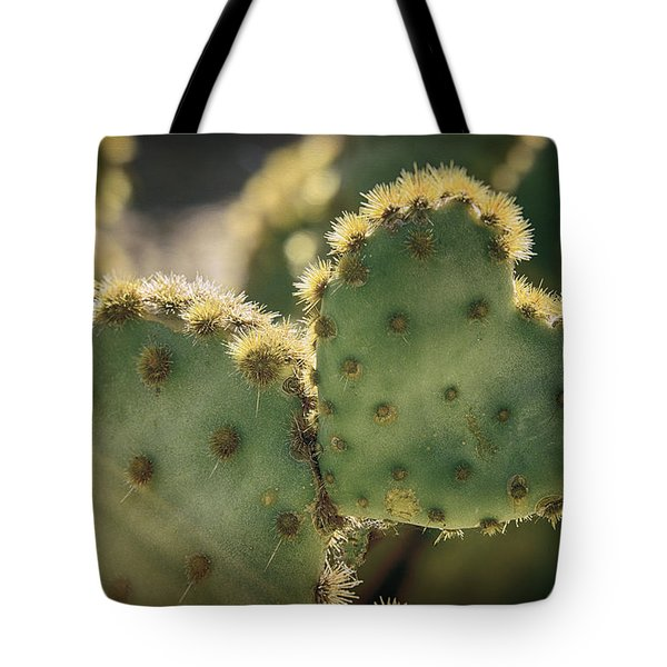 The Heart Of A Cactus  Tote Bag