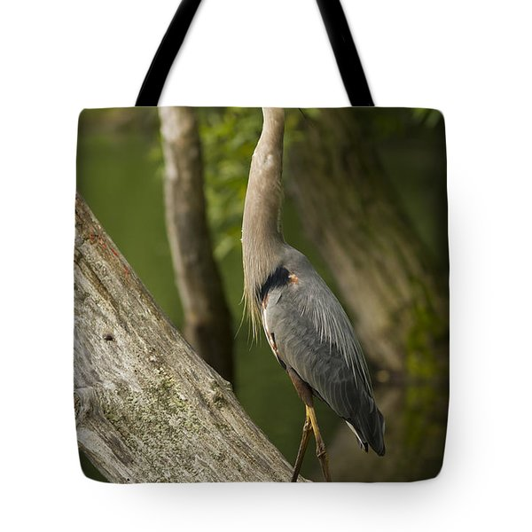The Heron And The Turtle Tote Bag
