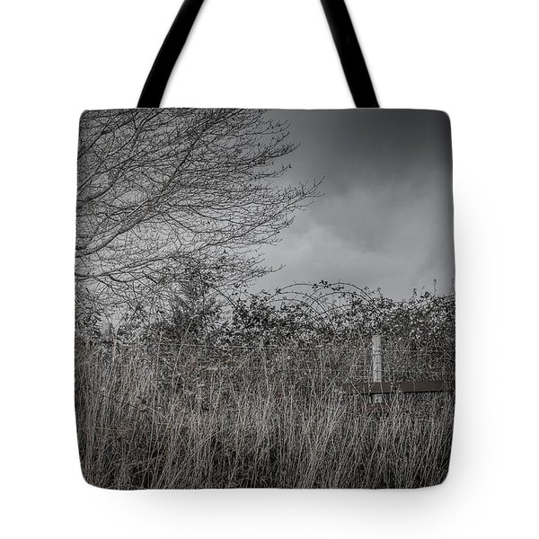 The Hidden Bench 2 Tote Bag